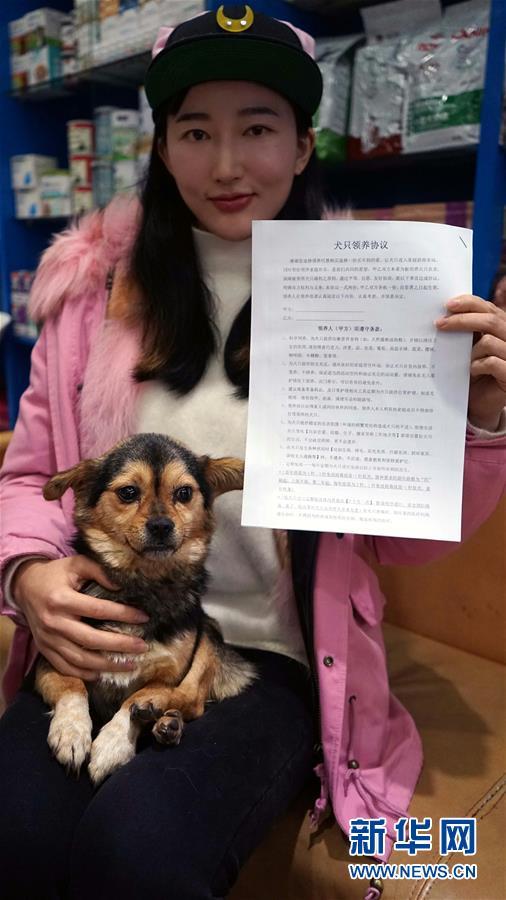 (社会)(1)江西南昌:首设犬只领养窗口