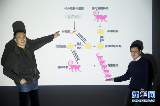 (科技)(5)世界生命科学重大突破! 两只克隆猴在中国诞生