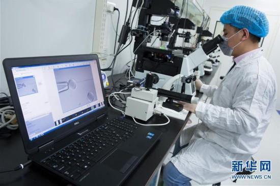 (科技)(8)世界生命科学重大突破! 两只克隆猴在中国诞生
