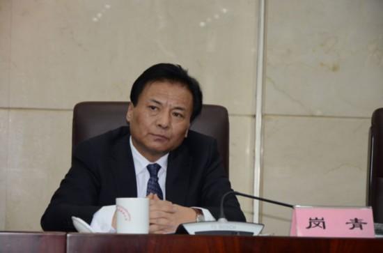 图为西藏自治区文化厅党组副书记、厅长 岗青.jpg