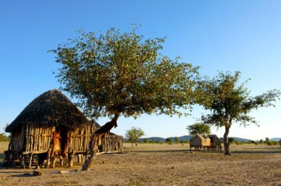 想去非洲国家旅游?权威部门:近期要注意预防霍乱
