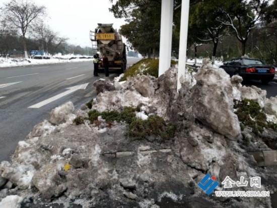 镇江绝大多数绿化岛头被雪覆盖 小苗存活无望