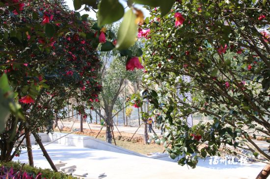 大樟永泰小汤山效果图片春节前迎客福州溪畔客厅装修公园生态客厅设计图图片