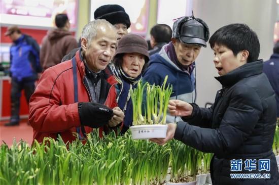 #(服务)(1)上海举办新春农产品大联展