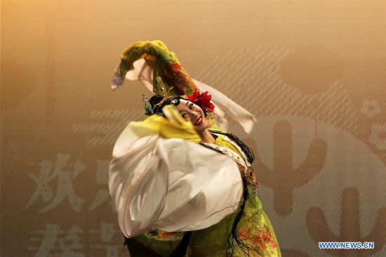 Chinese cultural performance for Chinese New Year held in