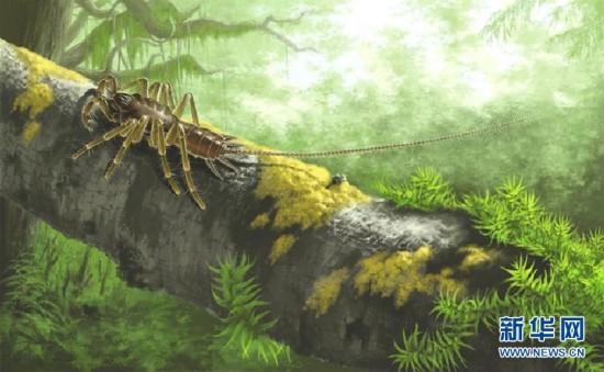 (图文互动)(4)研究发现1亿年前远古蜘蛛长有尾巴