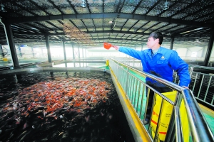 淮安:科技助力农业发展