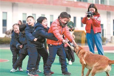 南京千名萌娃进消防学知识 与搜救犬亲密接触