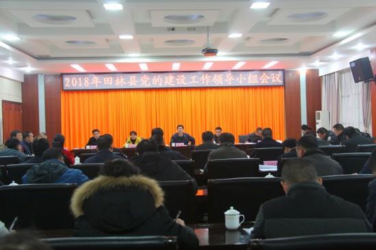 田林县召开2018年党的建设工作领导小组会议