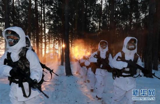 """(新春走基层・图文互动)(1)北极哨兵:挺立在风雪中的""""北极杨"""""""