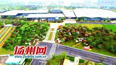 """三年长出十个""""瘦西湖"""" 扬州人为何青睐建公园"""