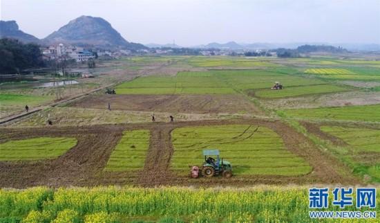 江西宜春:春季备耕忙