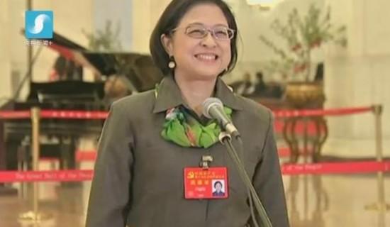 卢丽安荣获感动中国2017年度人物――爱国爱乡的台湾籍党代表