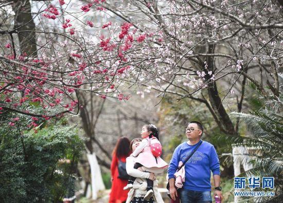 北京赛车pk10怎么玩:贵阳:畅享春光