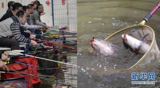 沈阳:老钓手一杆钓上两条大鱼