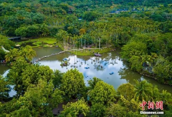 资料图:航拍海南呀诺达热带雨林景区。骆云飞 摄