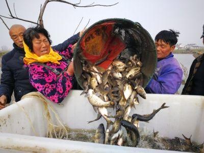 春来水暖 南通海安农户忙着选购鱼苗