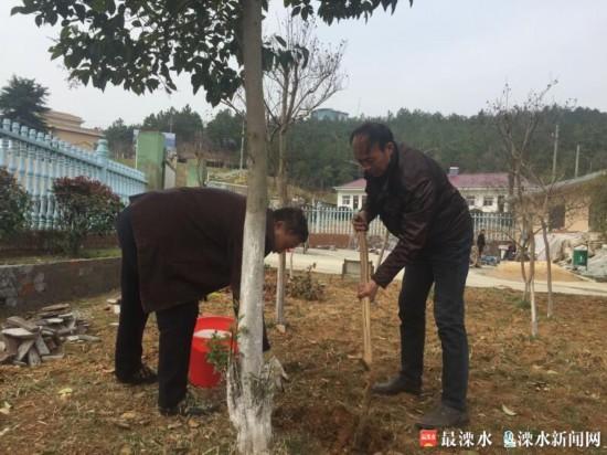 南京溧水卧龙水库推进绿化任务 改善整体环境