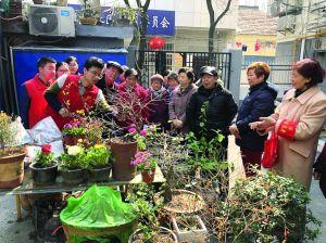 南京林业大学志愿者进社区教居民养花技巧