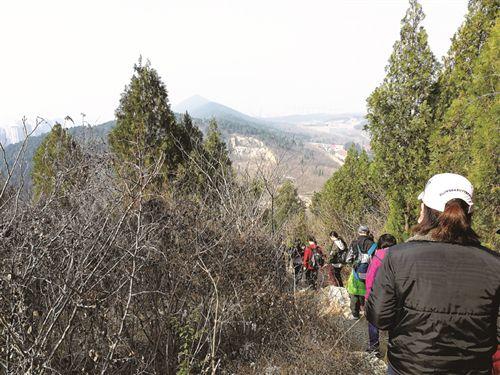 徐州人家门口这6条登山线路 让你尽览春山秀色