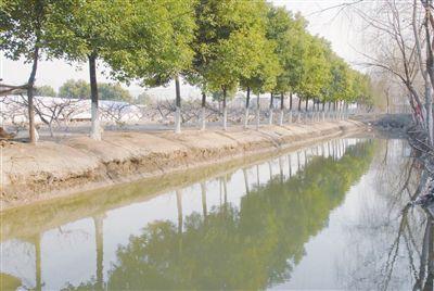 南通海門2018年造林綠化任務已完成七成