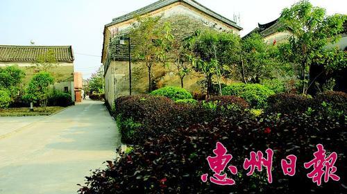 墨园村房前屋后绿树成荫。 本报记者陈春惠 通讯员陶 君 摄