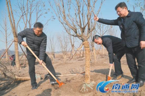 南通四套班子领导参加义务植树活动
