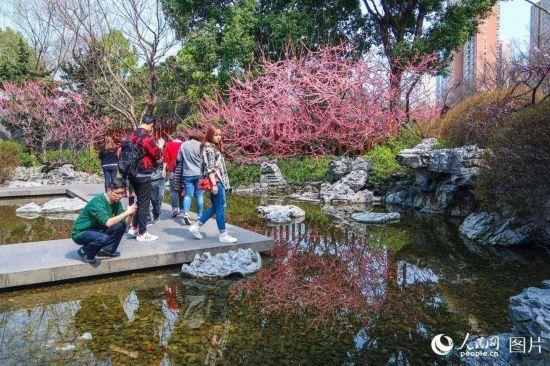 上海静安雕塑公园春花烂漫 市民踏春赏花乐不停【14】