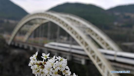 #CHINA-HUBEI-SPRING SCENERY (CN)