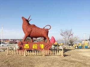"""淮安古庄牛村从经济薄弱村变身""""江苏最美乡村"""""""