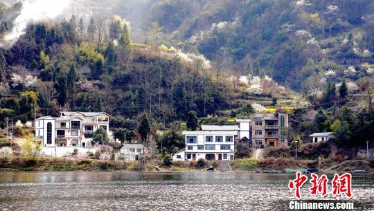 舞阳河如一衣带水,引领了两岸春景。 奉力 摄