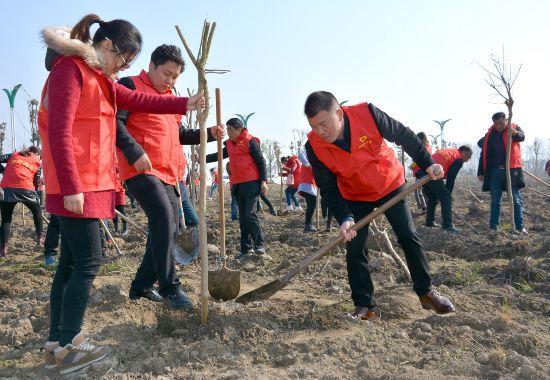 12日盐都各地干群组织开展义务植树活动