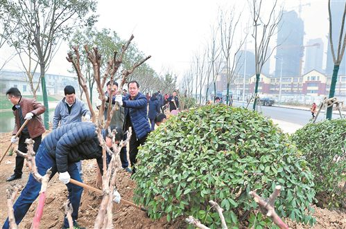 徐州經開區2018年將新增30公頃綠地