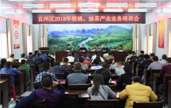 宜州:技术培训 为产业发展提速