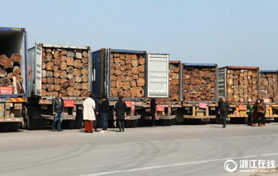 东阳:木材市场人气足 节后红木销售旺