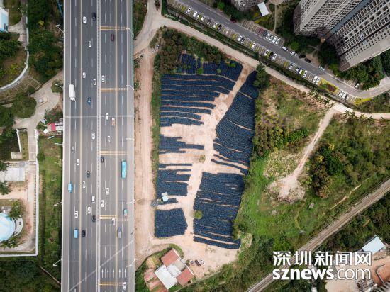 深圳小蓝单车暂时无法重新运营 堆积如山