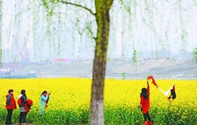 今天春分阳光回归 后天武汉最高气温或达23℃
