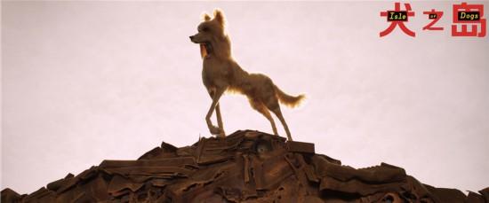 韦斯・安德森执导《犬之岛》 讲述小男孩阿塔利奇妙寻狗之旅