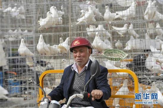 (社会)(1)新疆喀什:合作社促农脱贫增收