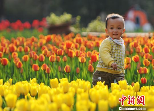 3月22日,小朋友在江西九江市濂溪区的九江新湖郁金香花博会现场玩耍。 胡国林 摄