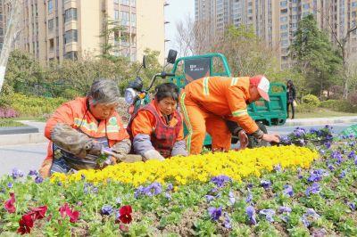 南通海安县加大道路绿化力度 扮靓城市