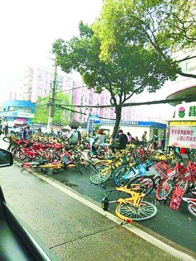 武汉酝酿减少共享单车数量