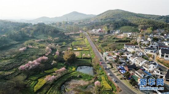 江苏:美丽乡村游 家门口增收