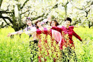 春天淮安鲜花盛开 市民到户外赏花拍照