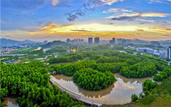 大亚湾红树林城市湿地公园获评国家4a级景区图片