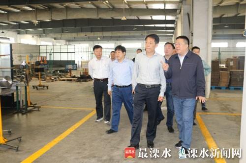 南京溧水区委书记谢元走访和凤镇工业企业