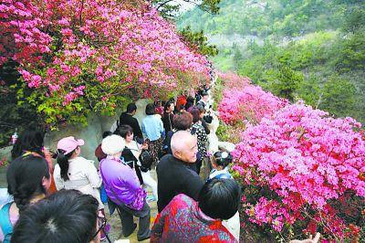木兰云雾山木兰天池游客爆满 建议市民前往其他景点