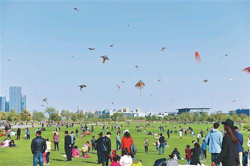 清明节暖风和煦 徐州大龙湖畔满天风筝飞舞