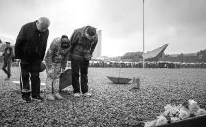 清明小长假14.3万人次悼念南京大屠杀遇难同胞