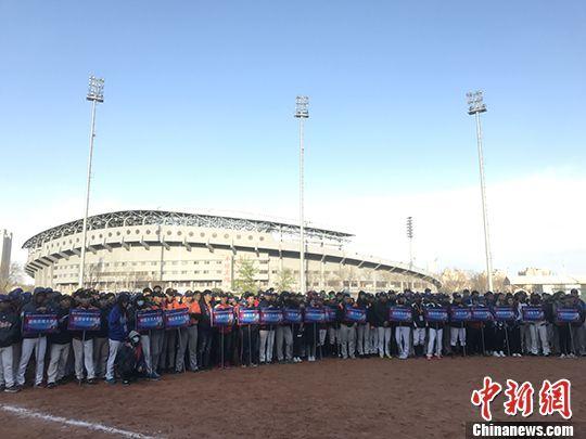 """""""登陆""""打棒球,台湾青少棒的新选项"""